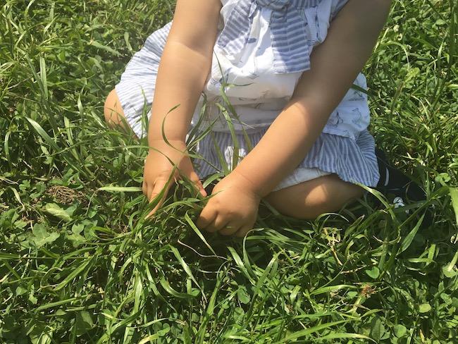 歩き始めの子供と芝生の公園で遊ぼう